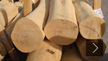 Specialist for robinia wood
