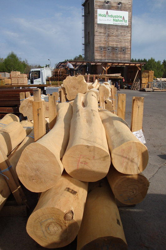 Robinia Roundwood Markpine Holzindustrie Nahmitz